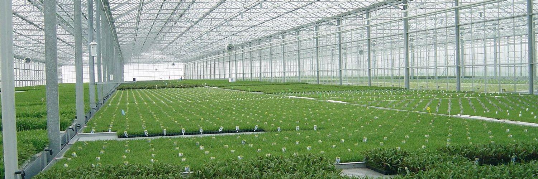LEXAN Corrugated sheet High impact resistance hail damage protection